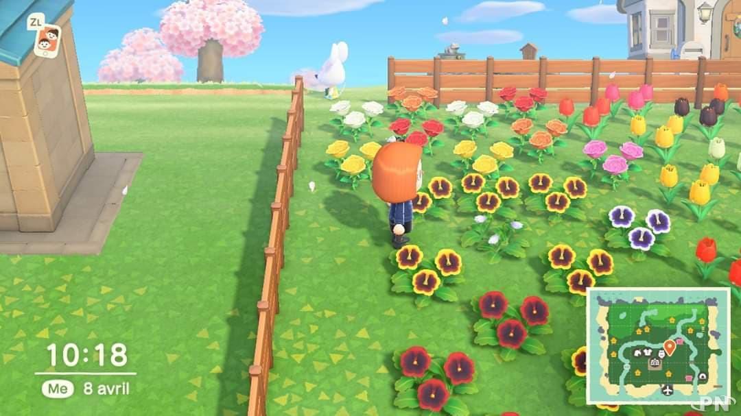Les fleurs dans Animal Crossing: New Horizons
