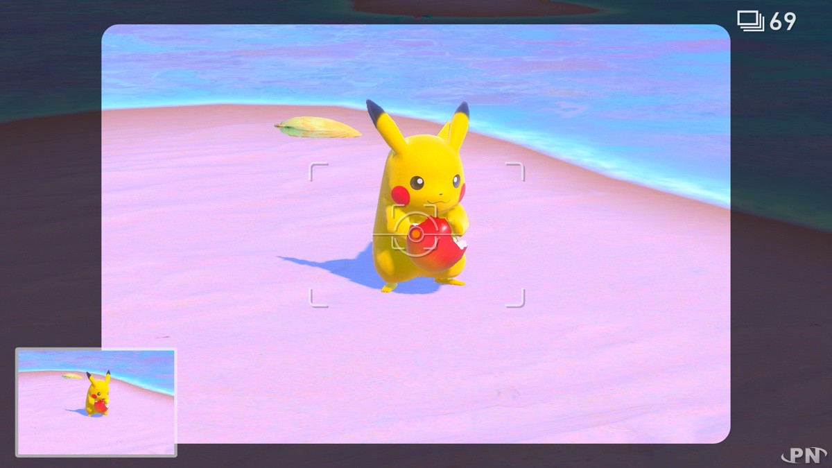 Cadrez bien vos Pokémon avant d'appuyer sur A pour les photographier