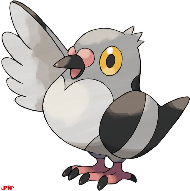 Pokemon Black et White, La 5e generation !!! Pidove
