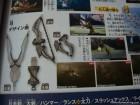 Scan de Monster Hunter 3G sur 3DS