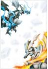 Photos de Pokémon Noir et Blanc 2 sur NDS