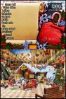Screenshots de Christmas Wonderland 2 sur NDS