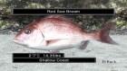 Screenshots de Reel Fishing Ocean Challenge sur Wii