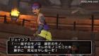 Screenshots de Dragon Quest X sur Wii