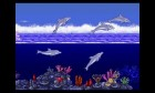 Screenshots de 3D Ecco The Dolphin sur 3DS