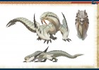 Scan de Monster Hunter 3 sur Wii