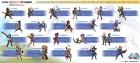 Infographie de Final Fantasy Explorers sur 3DS