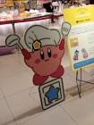 Photos de Kirby sur Wii