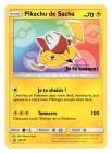 Artworks de Pokémon (saga)