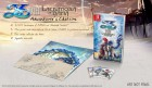 Collector de Ys VIII: Lacrimosa of DANA sur Switch