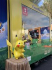 Photos de Pokémon Let's Go Pikachu/Evoli sur Switch