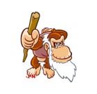 Artworks de DK : King of Swing sur GBA