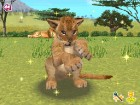 Screenshots de Animal Paradise Wild sur NDS