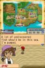 Screenshots de Harvest Moon : l'Ile Sereine sur NDS