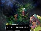 Screenshots de Knights in the Nightmare sur NDS