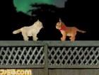 Screenshots de Love Cat Life sur NDS