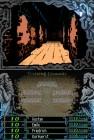 Screenshots de The Dark Spire sur NDS