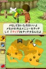 Screenshots de The Legend of Zelda : Phantom Hourglass sur NDS