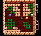 Screenshots de The adventures of Lolo sur Wii