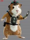 Artworks de G-Force sur Wii