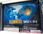 Photos de Monster Hunter 3 sur Wii