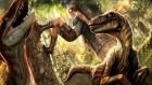 Artworks de Lara Croft Tomb Raider : Anniversary sur Wii
